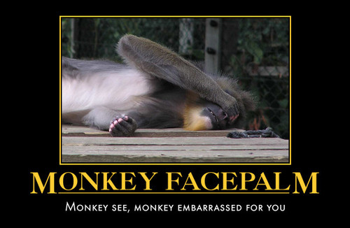 http://snarkysarcasticbish.files.wordpress.com/2012/07/monkey_facepalm-scaled-500.jpg